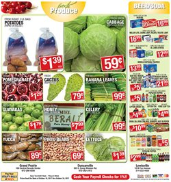 Fruit deals in the Terry's Supermarkets weekly ad in Dallas TX