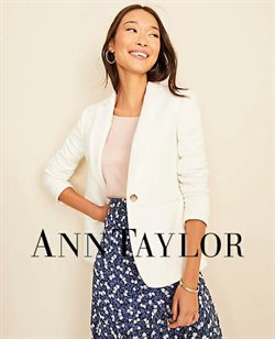 Ann Taylor catalogue in Chicago IL ( 21 days left )