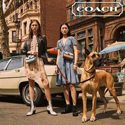 Coach deals in the New York weekly ad