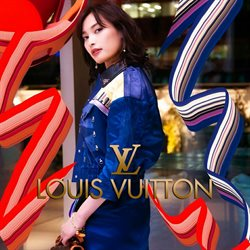 Louis Vuitton catalogue in Norristown PA ( 6 days left )