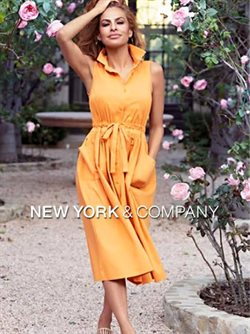 New York & Company catalogue in Dallas TX ( 20 days left )