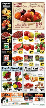 Barbecue deals in the Vons weekly ad in Dallas TX