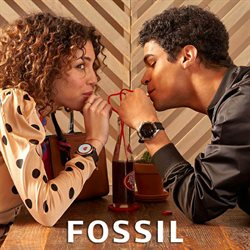 Fossil catalogue in Costa Mesa CA ( More than a month )