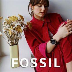 Fossil catalogue in Los Angeles CA ( 26 days left )