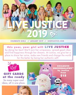 Kids, Toys & Babies deals in the Justice weekly ad in Knoxville TN