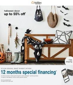 Ashley Furniture catalog ( 15 days left)