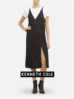 Kenneth Cole catalogue ( More than a month )