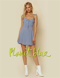 Planet Blue deals in the New York weekly ad