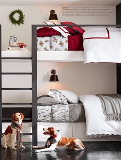 Christmas deals in the Pottery Barn weekly ad in New York
