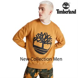 Timberland catalogue ( More than a month )