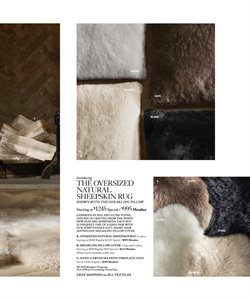 Rug deals in the Restoration Hardware weekly ad in Newark DE