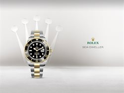 Rolex catalogue in Phoenix AZ ( Expires tomorrow )