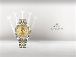 Rolex catalogue ( 8 days left )