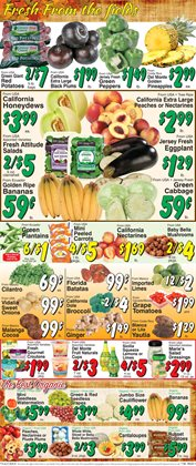 Broccoli deals in the Trade Fair Supermarket weekly ad in New York