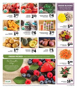 Salad deals in the Andronico's weekly ad in San Francisco CA