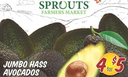 Sprouts Farmers Market catalogue ( Expires tomorrow )