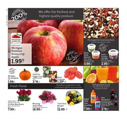 Ladder deals in the D&W Fresh Market weekly ad in New York