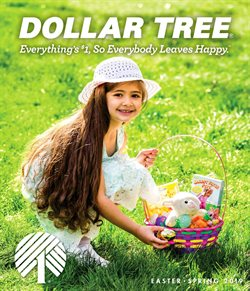 Discount Stores deals in the Dollar Tree weekly ad in Anderson SC