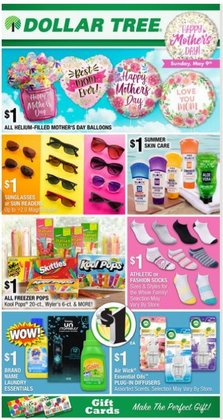 Dollar Tree catalog ( Expires tomorrow)
