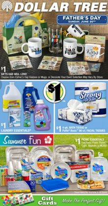 Discount Stores deals in the Dollar Tree catalog ( Expires today)