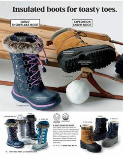 Boots deals in the Lands' End weekly ad in New York
