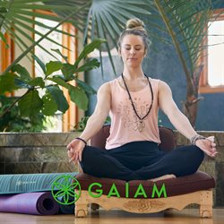 Gaiam catalogue ( More than a month )