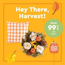 Discount Stores deals in the 99 Cents Only Stores catalog ( 12 days left)