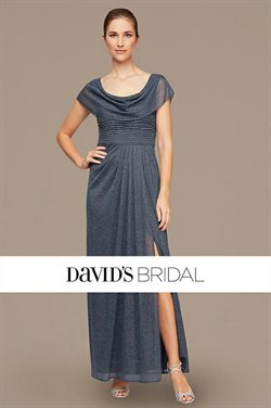 David's Bridal catalogue in New York ( More than a month )