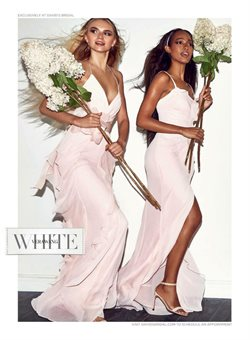 Dress deals in the David's Bridal weekly ad in New York