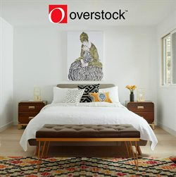 Overstock deals in the New York weekly ad