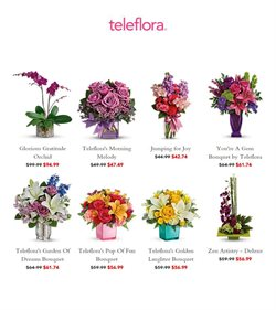 Gifts & Crafts offers in the Teleflora catalogue in Dallas TX ( 2 days left )