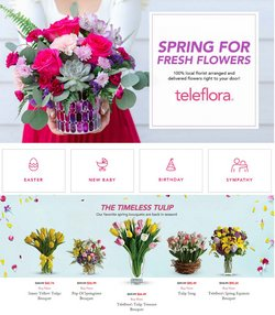 Gifts & Crafts offers in the Teleflora catalogue in San Francisco CA ( Expires today )
