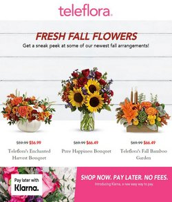 Gifts & Crafts deals in the Teleflora catalog ( 2 days ago)