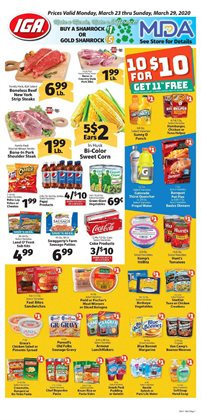 IGA catalogue ( Expires tomorrow )