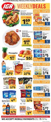 IGA catalog ( Expires today)