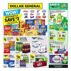Discount Stores deals in the Dollar General weekly ad in Saint Augustine FL