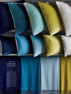 Pillow deals in the Williams Sonoma weekly ad in New York