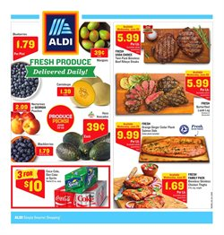 Discount Stores deals in the Aldi weekly ad in Knoxville TN