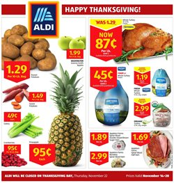 Discount Stores deals in the Aldi weekly ad in Poughkeepsie NY