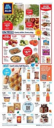 Discount Stores deals in the Aldi catalog ( 3 days left)