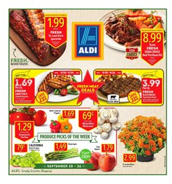 Discount Stores deals in the Aldi weekly ad in Johnstown PA