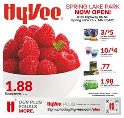 Hy-Vee deals in the Hy-Vee catalog ( Expires today)