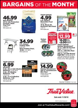 Tools & Hardware deals in the True Value weekly ad in Knoxville TN
