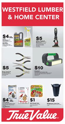 Tools & Hardware deals in the True Value weekly ad in Wilmington DE
