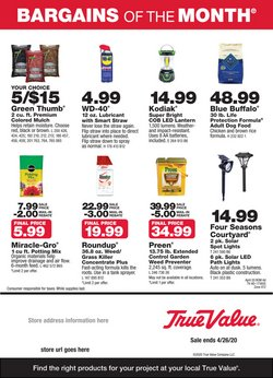 True Value catalogue in Arlington Heights IL ( 21 days left )