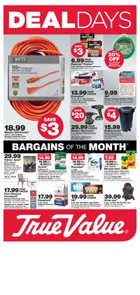 Tools & Hardware offers in the True Value catalogue in Salisbury NC ( 3 days left )