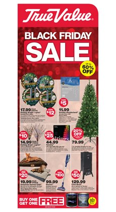 Tools & Hardware offers in the True Value catalogue in Panorama City CA ( Expires tomorrow )