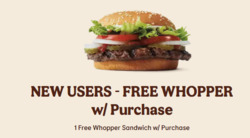 Burger King coupon ( 22 days left )