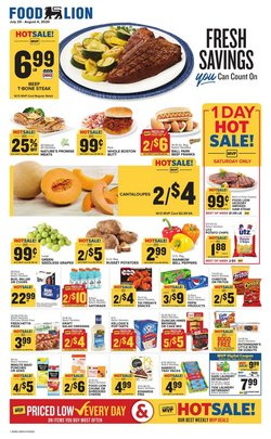Food Lion catalogue ( Expires tomorrow )