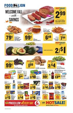 Food Lion catalogue ( Expires today )